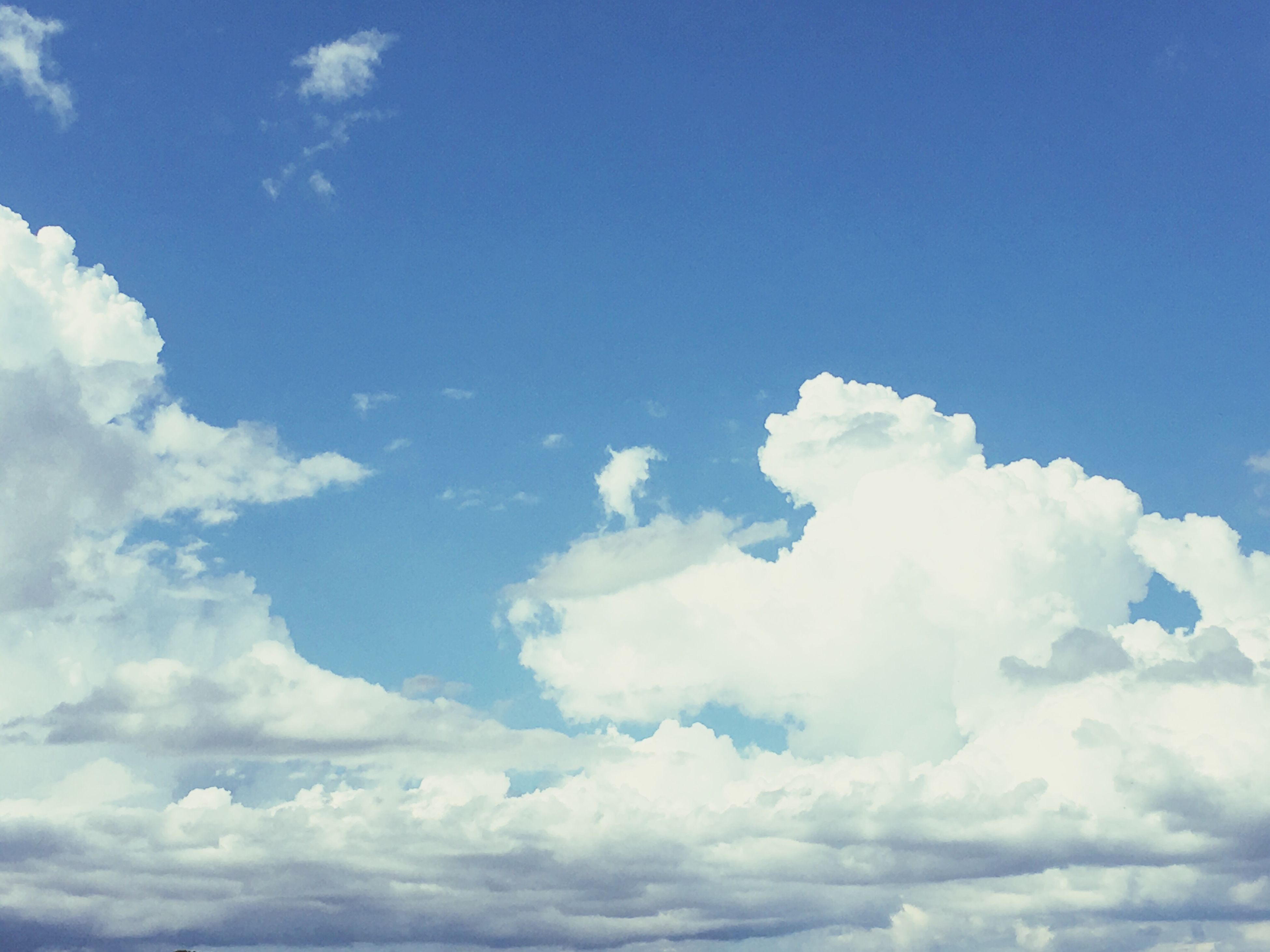 blue, sky, beauty in nature, low angle view, tranquility, cloud - sky, scenics, tranquil scene, nature, cloud, sky only, majestic, day, cloudscape, outdoors, full frame, softness, heaven, fluffy, cumulus cloud, no people