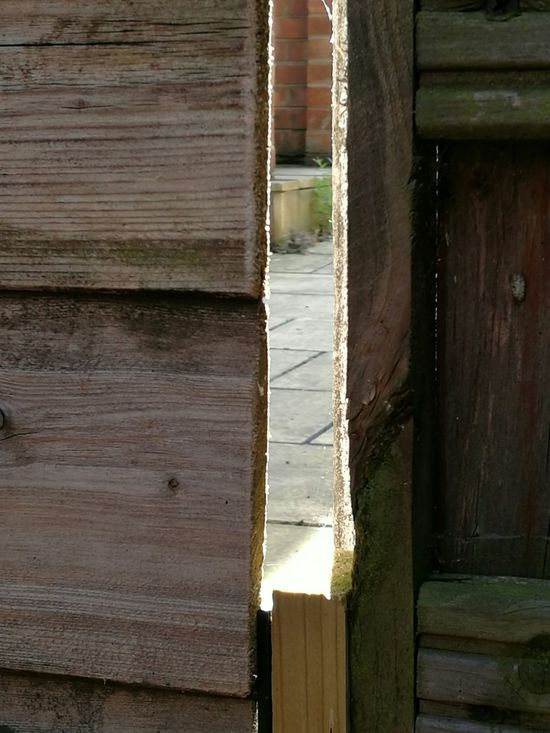 No People Peep LINE Paving Stones Garden Beyond Wood Wooden Gate Entrance Come In Mystery Light And Shadow Shadows Gap