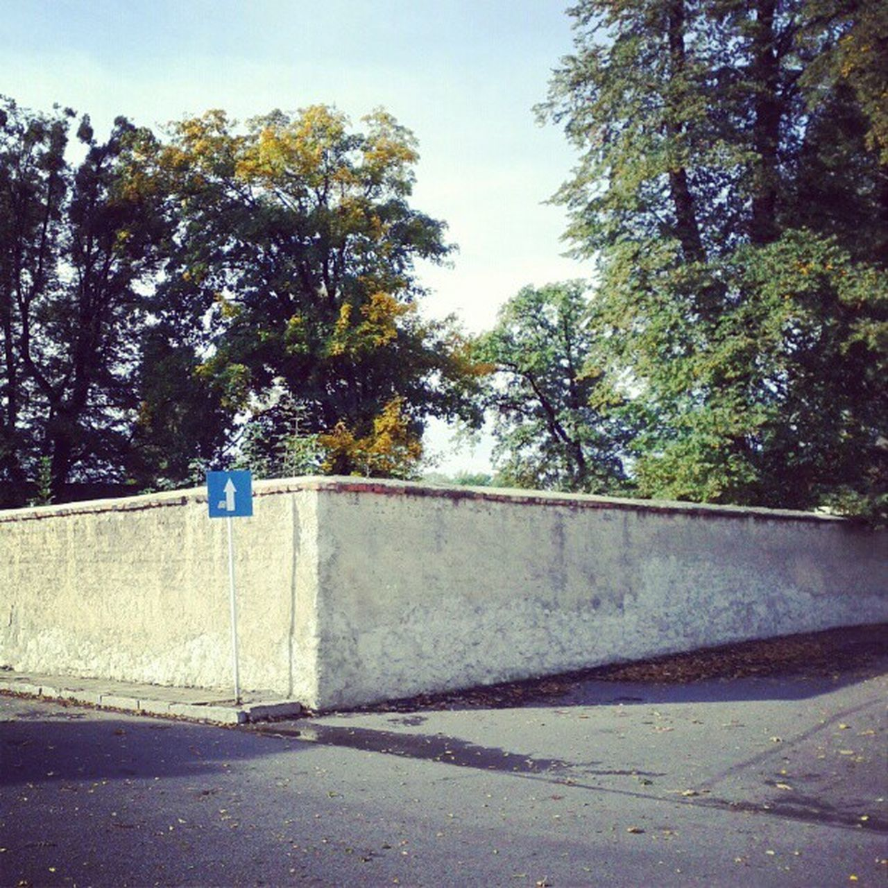 #igerscycling #igersberlin #igers #instagram #instatalent #cycling #traveling #Android #androidography #structure #nature #wall #samsung #tumblr Igersberlin Igerscycling Traveling Nature Structure Cycling Wall Tumblr Android Instagram Samsung Androidography Igers Instatalent
