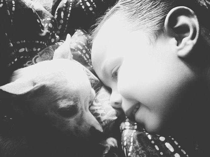Hanging Out I Love My Dog Taking Photos Black & White