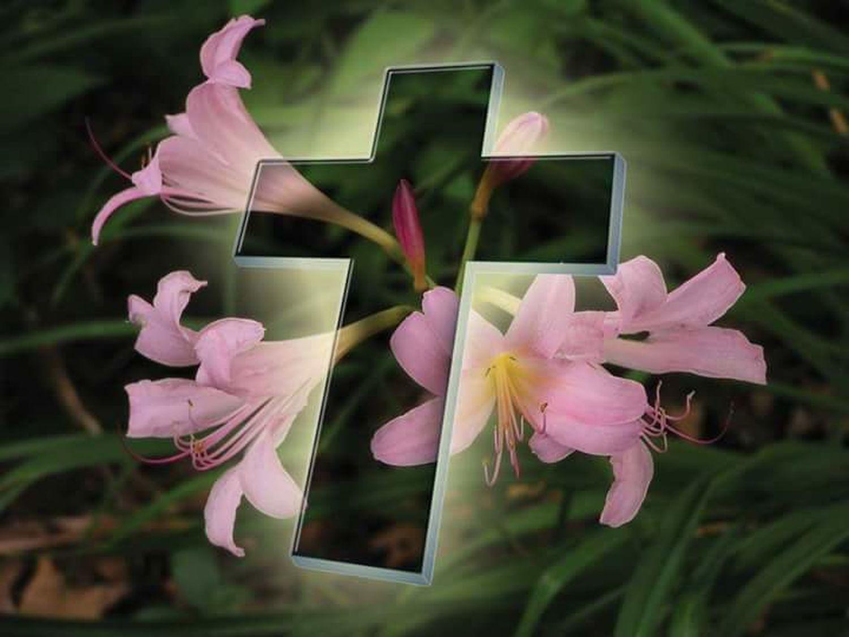 HappyGoodFriday HappyEasterWeekEnd Blessing'sToEveryone Flower Head Cross