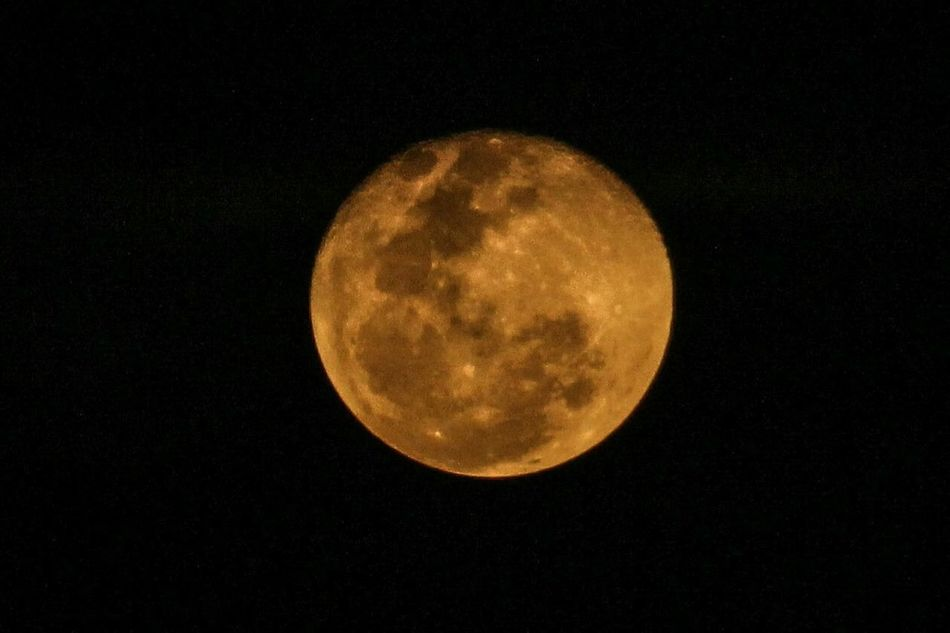 Moon Moonlight Moonrise Bigmoon Yellowmoon Mood Captures Moon_collection Moonlightscape Like 20likes All_shots Moon_of_the_day Photooftheday Dslrphotography