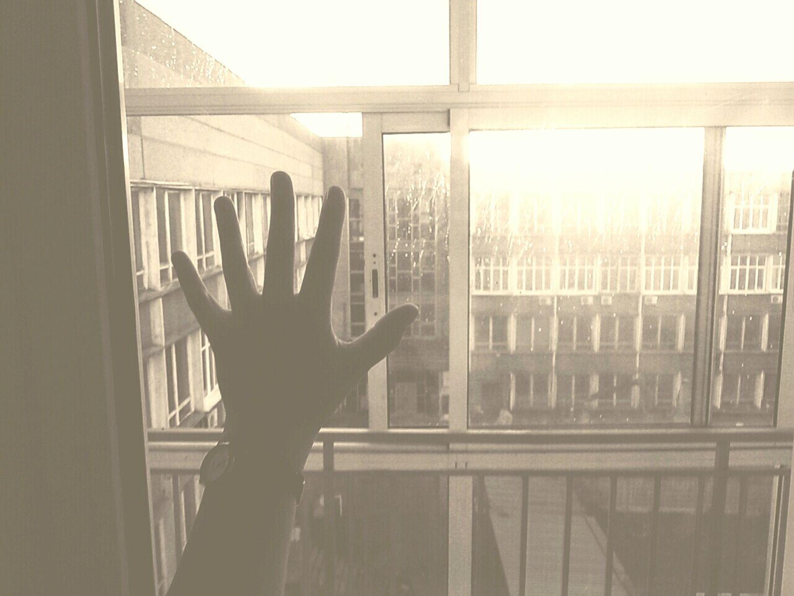 сегодня  мы проснулись вместе . я и мое желание сдохнуть. Всем спасибо👍