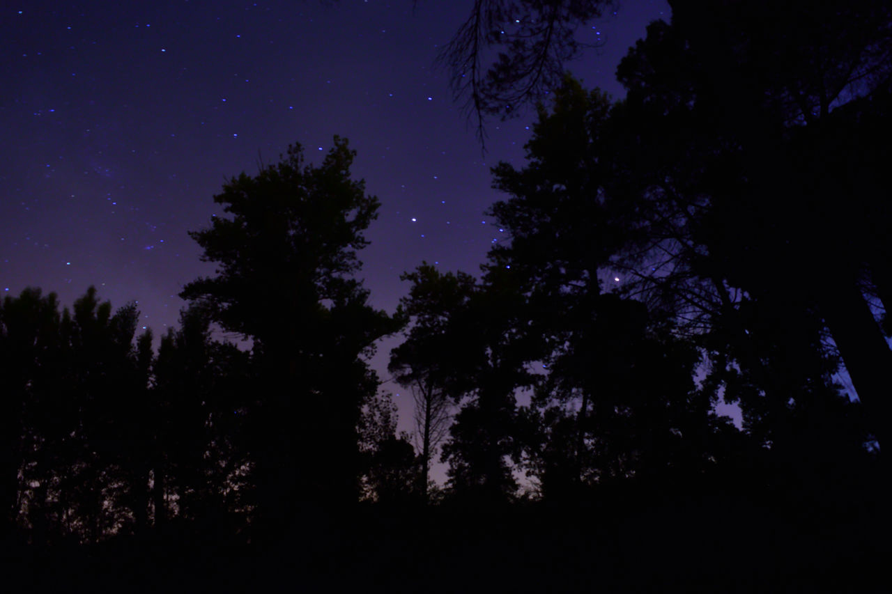 Allonetime Dark Infinity Long Exposure Night Time Photography No People Shawdows Silhouette Sky Sky Eye The Forest