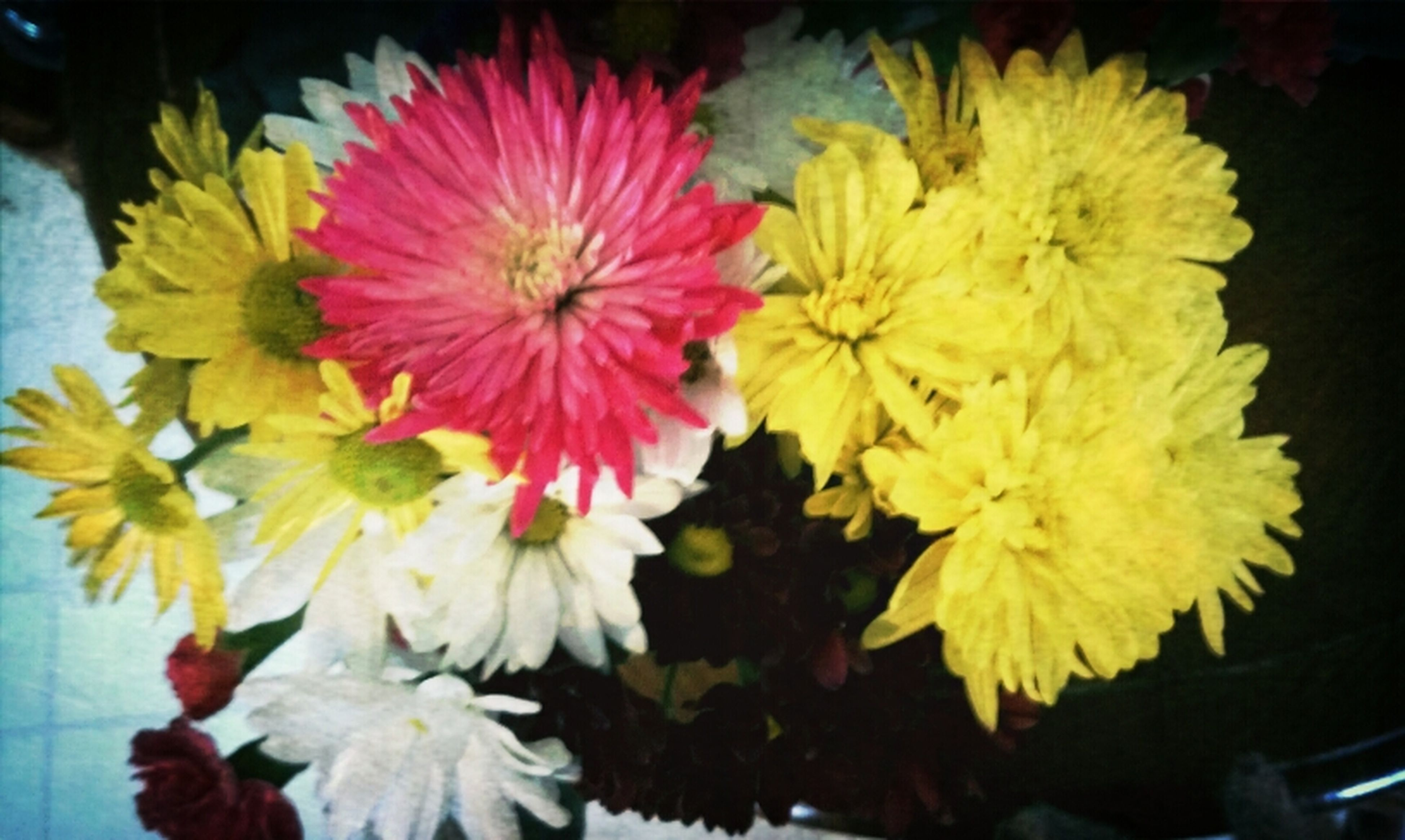 flower, petal, freshness, flower head, yellow, fragility, beauty in nature, close-up, indoors, high angle view, blooming, nature, growth, plant, in bloom, pollen, no people, bunch of flowers, pink color, blossom