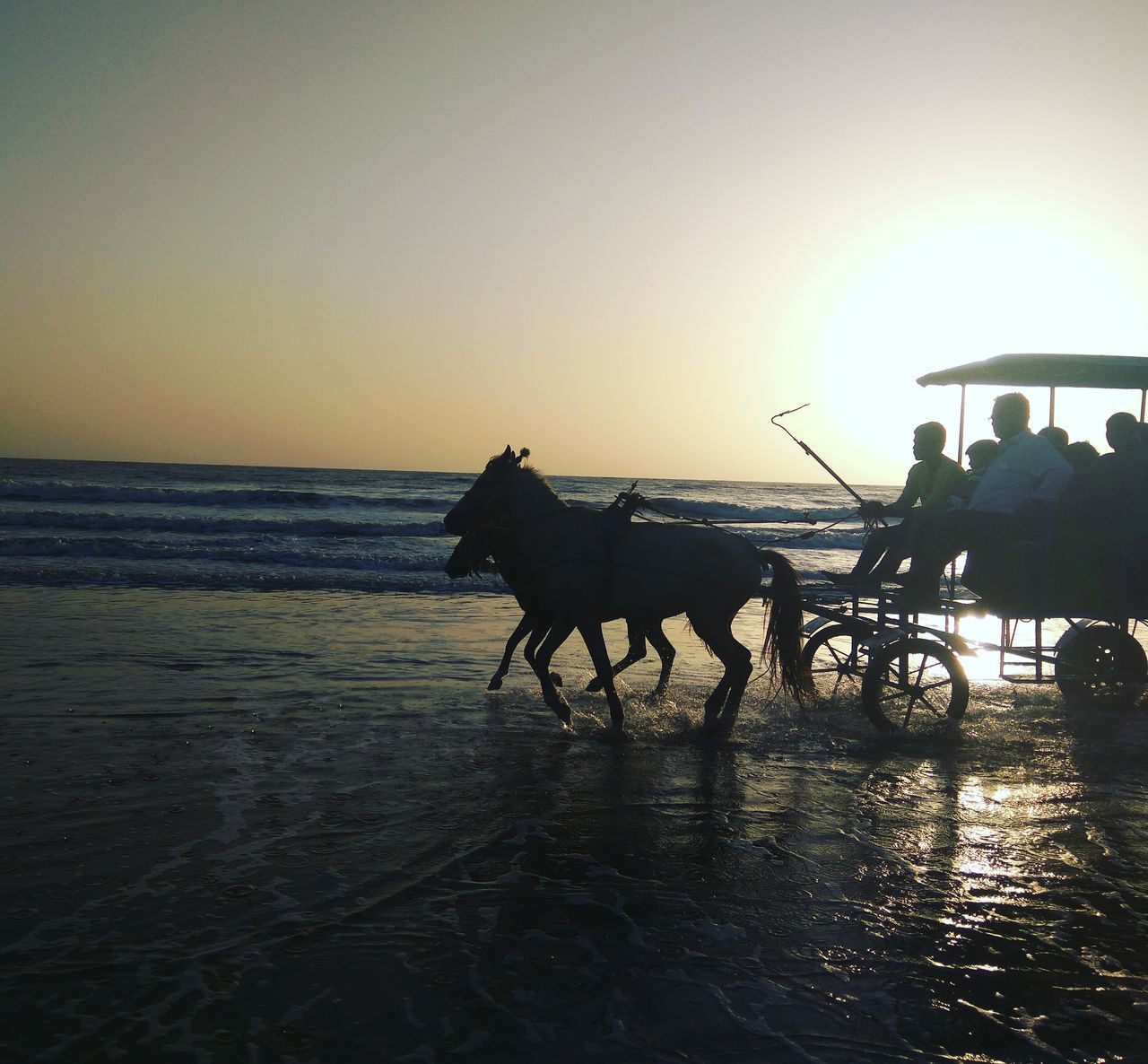 sea, horse, sunset, working animal, water, domestic animals, riding, nature, men, silhouette, horizon over water, beach, transportation, real people, beauty in nature, horseback riding, clear sky, outdoors, mammal, sky, scenics, horse cart, sand, full length, one person, day, people