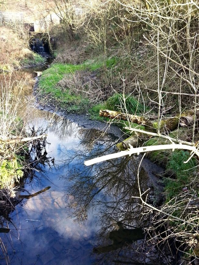 Brook Winter Blue Sky Water Reflections