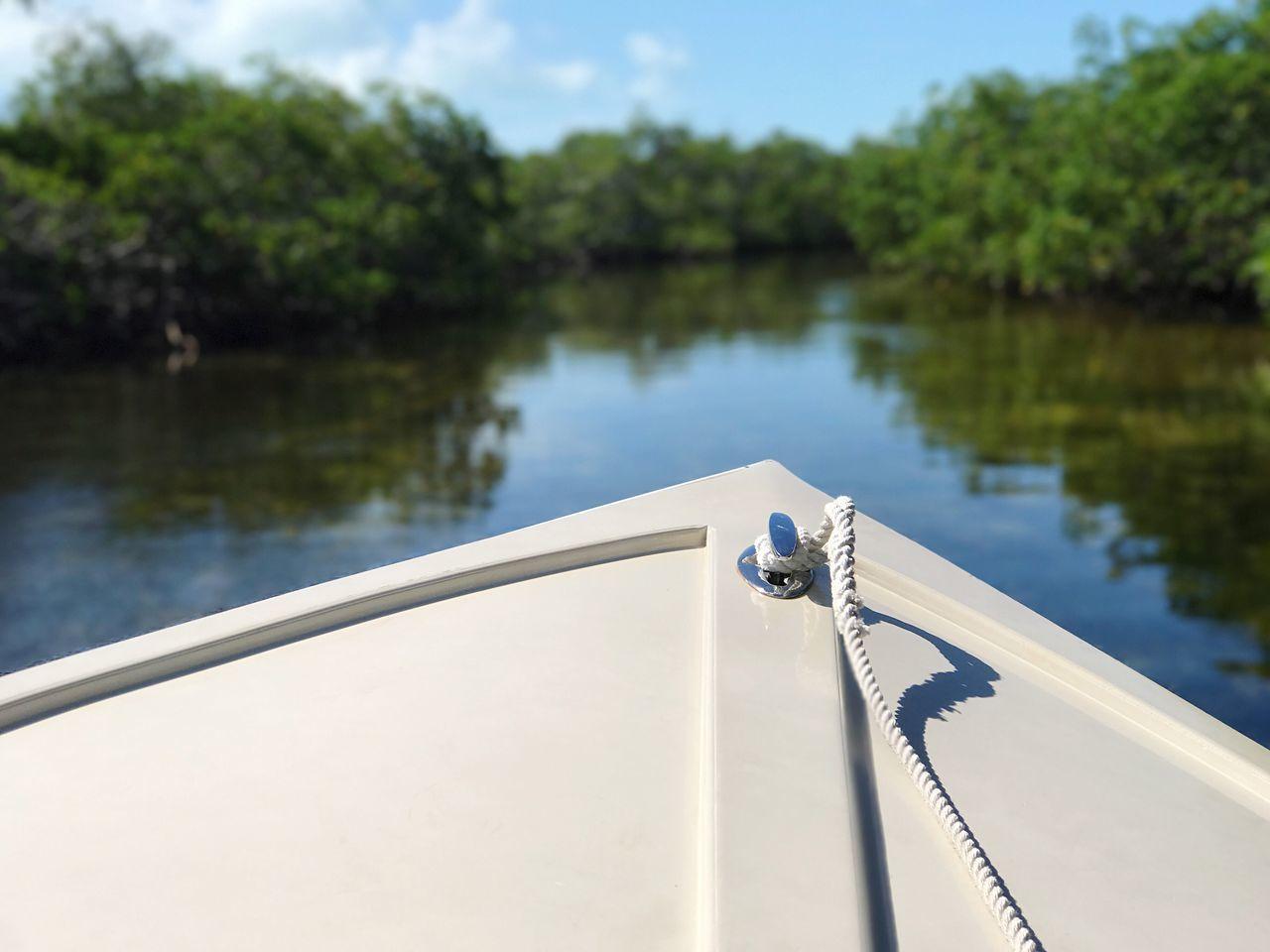 In the mangroves The Way Forward The Bahamas bBiminipPhotographyisthemuseoOutdoorsEEnjoying NaturemMangrovesOOn The WaterTTravel PhotographytTravel DestinationsnNautical VesselwWatermMode Of TransportdDaybBoat