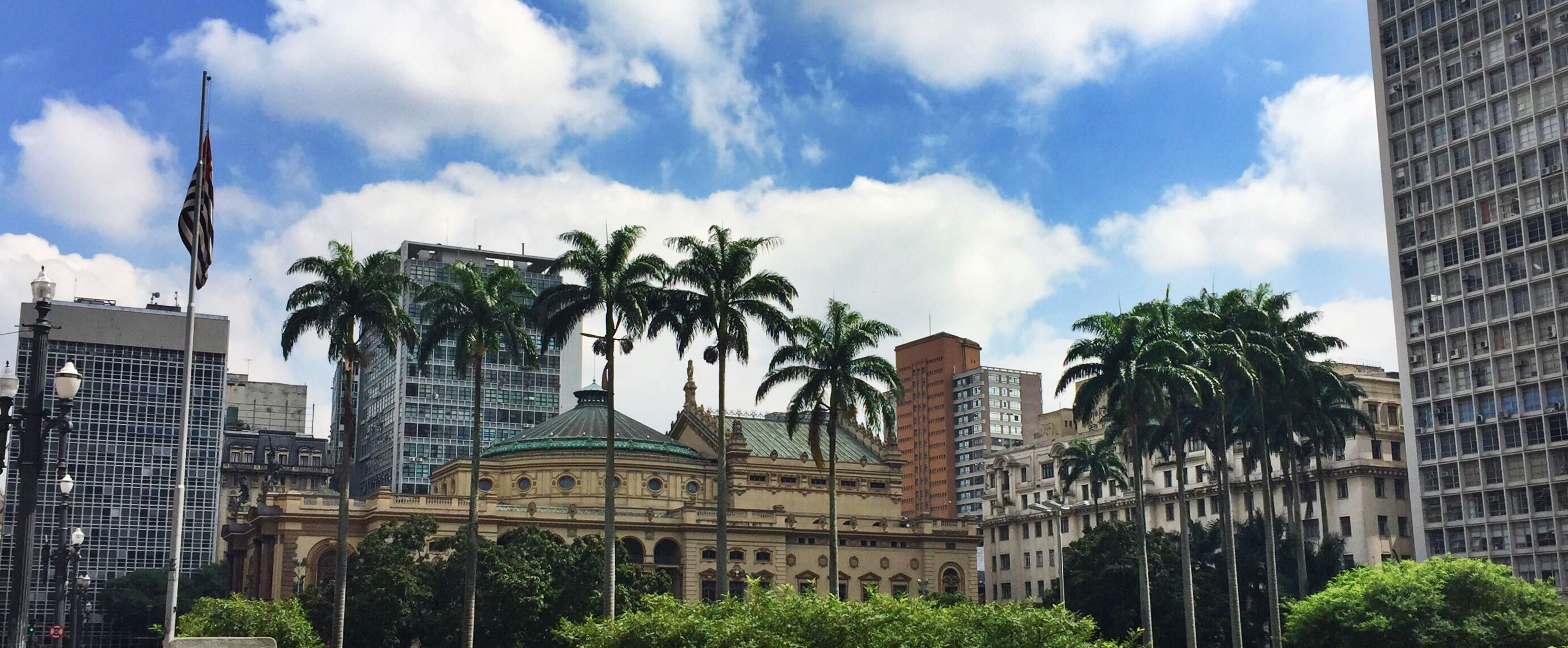 architecture, built structure, building exterior, sky, tree, low angle view, city, palm tree, cloud - sky, tall - high, modern, cloud, skyscraper, tower, travel destinations, growth, building, office building, cloudy, day