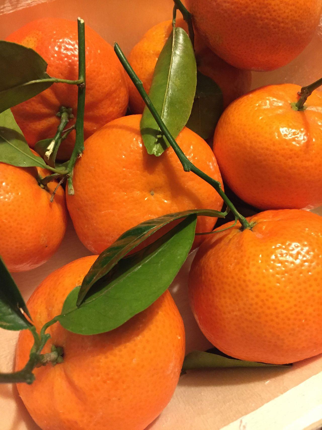 Orange - Fruit Fruit Freshness Citrus Fruit Orange Color Healthy Eating Leaf Food Food And Drink No People Close-up Orange Tree Day