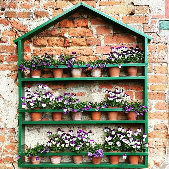 Beautiful flower pot display in the walled gardens at Greys Court in Henley