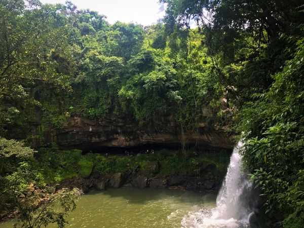 Nature Waterfall Scenics Water Beauty In Nature Outdoors Growth Peace In A World Of Chaos Beauty In Nature Rock Formation Looking For Adventures Backgrounds Perspectives On Nature