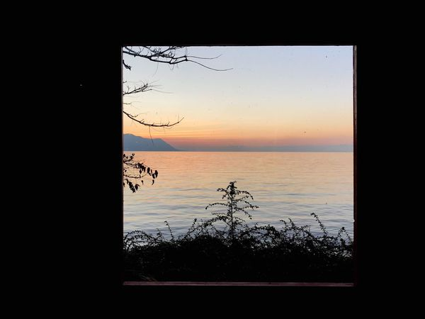 Sunset Nature Tree Reflection Water Sky Silhouette Sea Beauty In Nature No People Scenics Horizon Over Water Outdoors Day Montreux Lake Leman