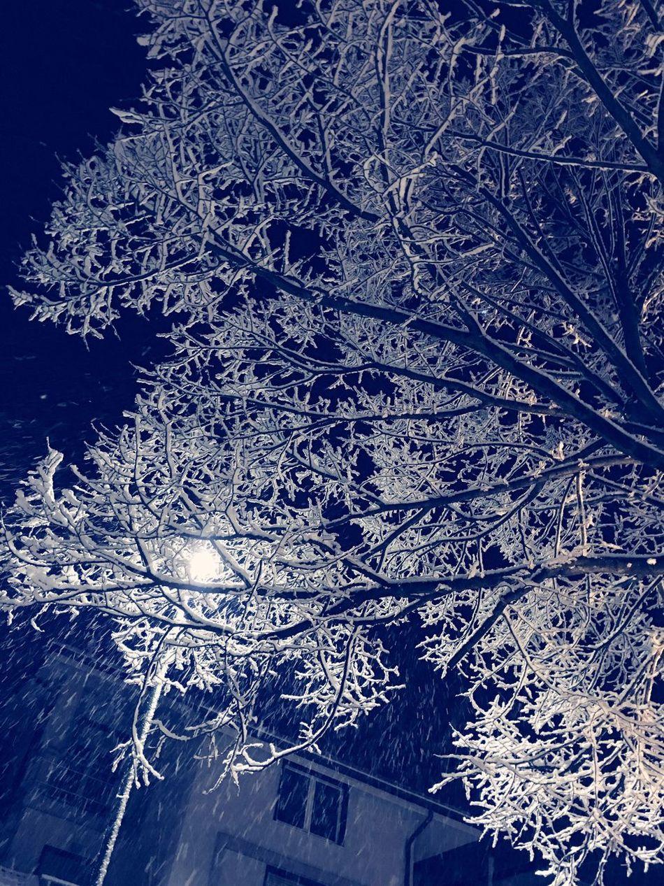 Snow Heyoh Ice Light&blue
