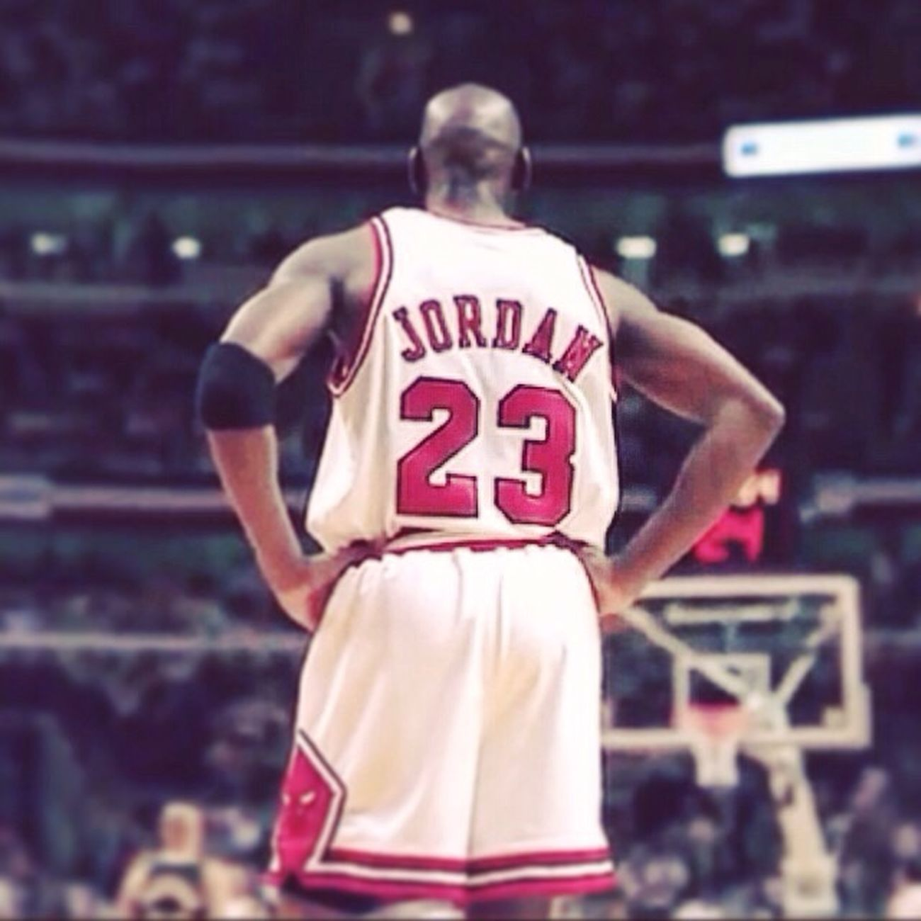 The big boss Mj Michaeljordan 23