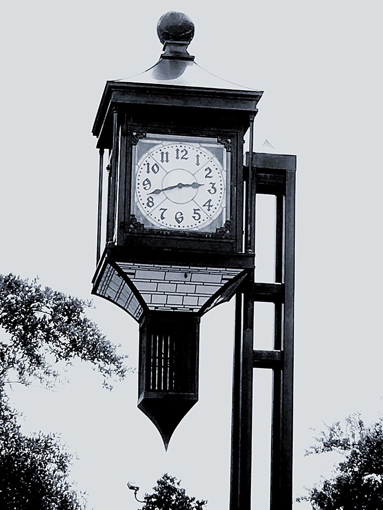 Once Upon A Time I Thought Time Was On My Side. But Now That I'm Older I've Realized Time Is Short! Black And White