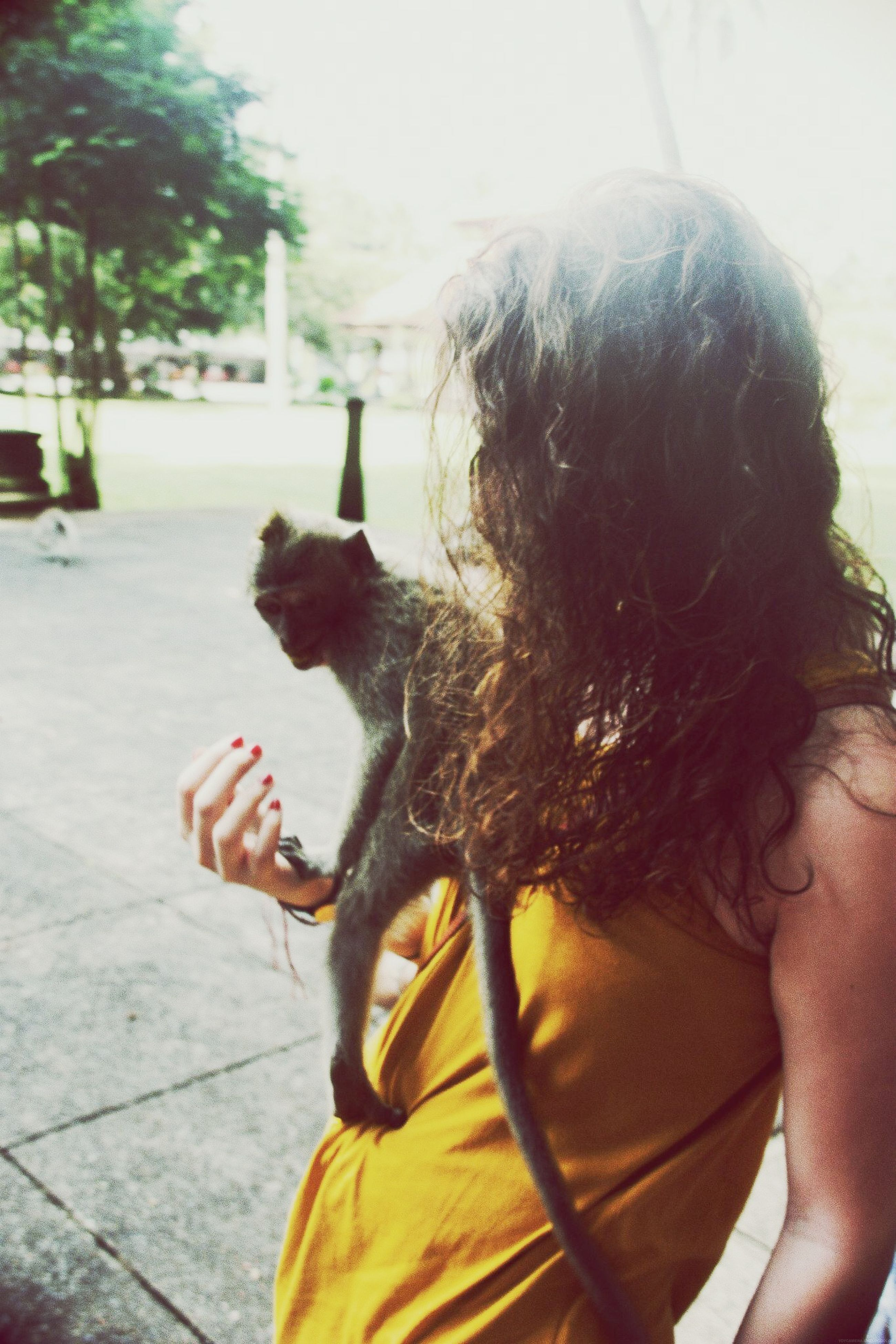lifestyles, leisure activity, one animal, side view, focus on foreground, headshot, long hair, person, rear view, animal themes, looking away, close-up, young women, sunlight, holding, day, part of