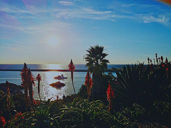 Corona Del Mar Beach Lookingdown California Blessedday Sunset Silhouettes Corona Del Mar Corona Del Mar State Beach
