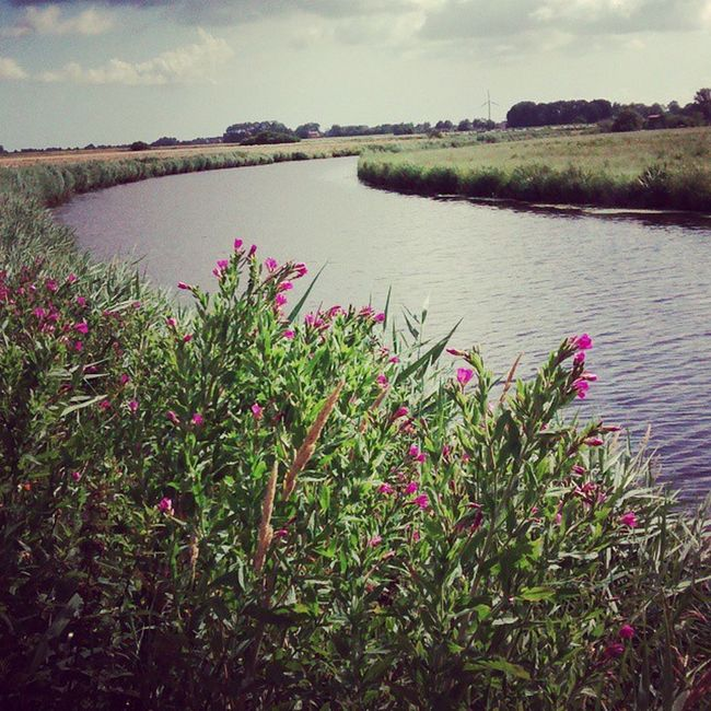 Beautiful Nature Landscape River River Picohtheday