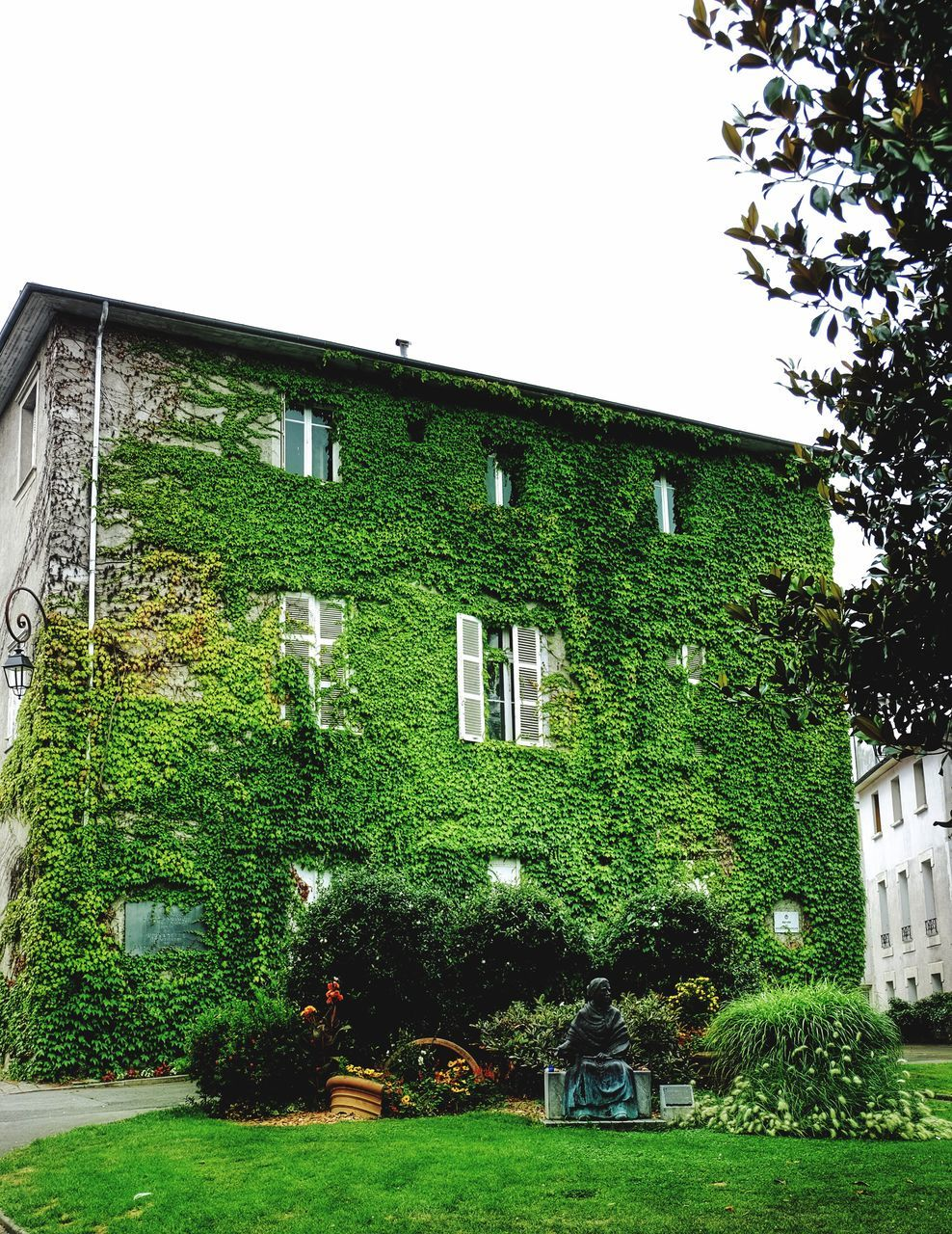 architecture, building exterior, built structure, house, tree, window, green color, residential building, no people, ivy, outdoors, day, grass, clear sky, plant, sky, nature
