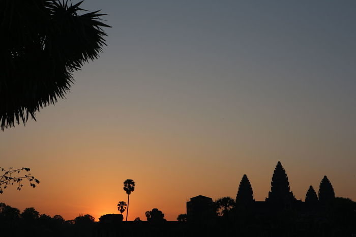 Angkor Wat Sunrise Nature Sky Clear Sky Travel Destinations Beauty In Nature Cambodia nofilternoedit Travel Summer Hot Day