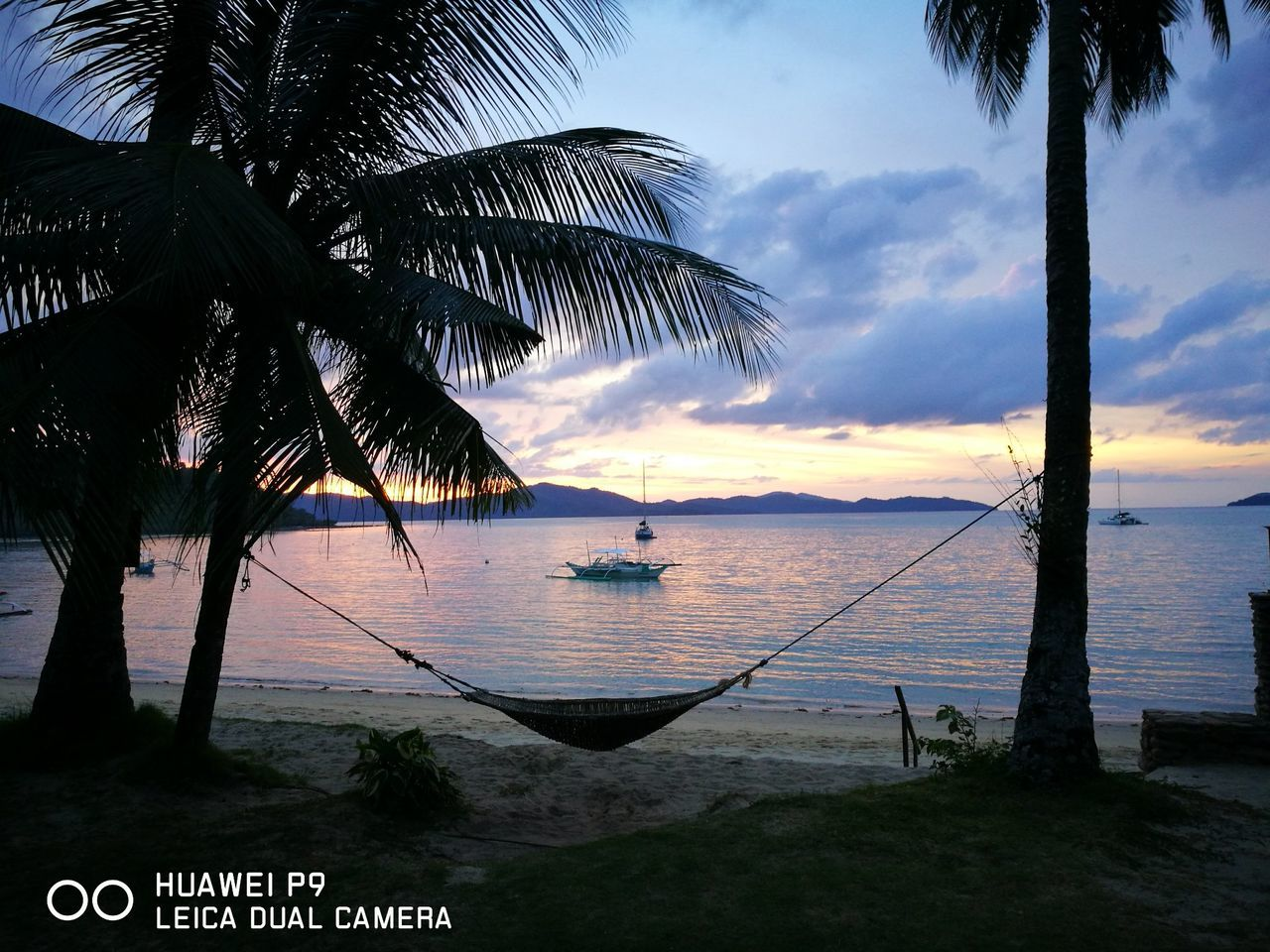 Port Barton Philippines Vacations Nature Tree Sea