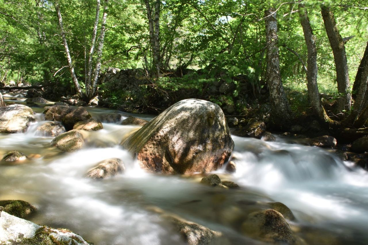 Blurred Motion Of River Flowing By Trees