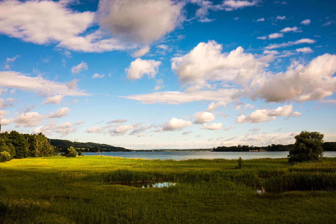 Beauty In Nature Cloud - Sky Day Field Grass Green Color Landscape Nature No People Outdoors Scenics Sky Tranquil Scene Tranquility Tree Water