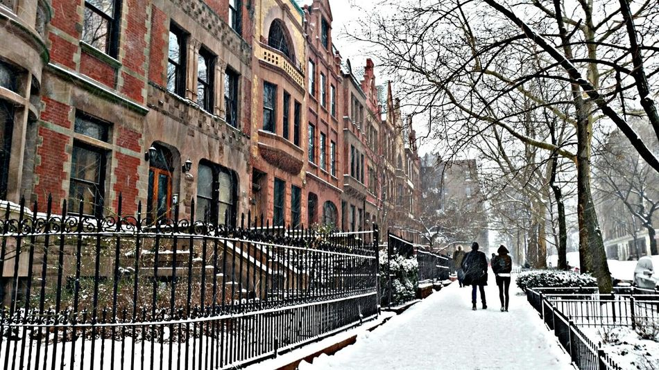 NYC Street NYC Brownstones Hamilton Heights Harlem  LunaLens The Human Condition