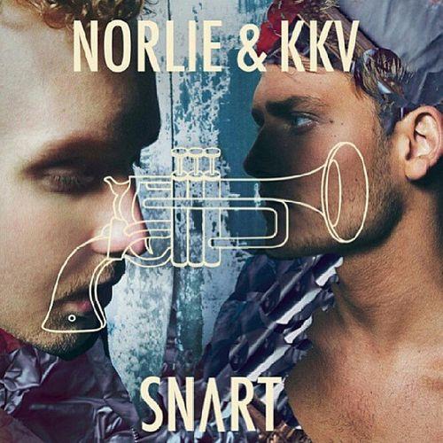 """"""" Det finns saker jag saknar, typ när vi var nakna """" NorlieKKV Nyttalbum Spotifypremium @pgunnarsson"""