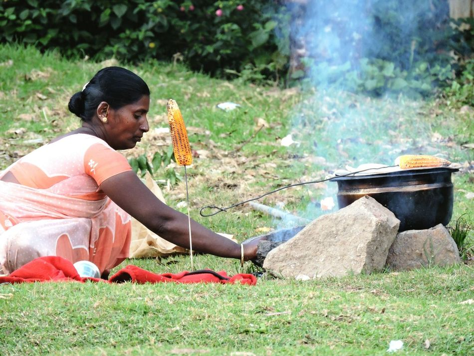 Lady Hardwork To Live  Spotted In Munnar India Corn Taking Photos
