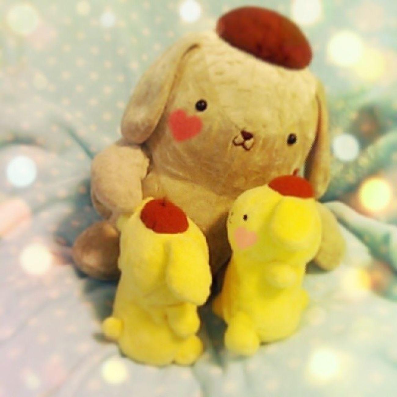 かわいい(*▽*) Pompompurin ポムポムプリン Sanrio
