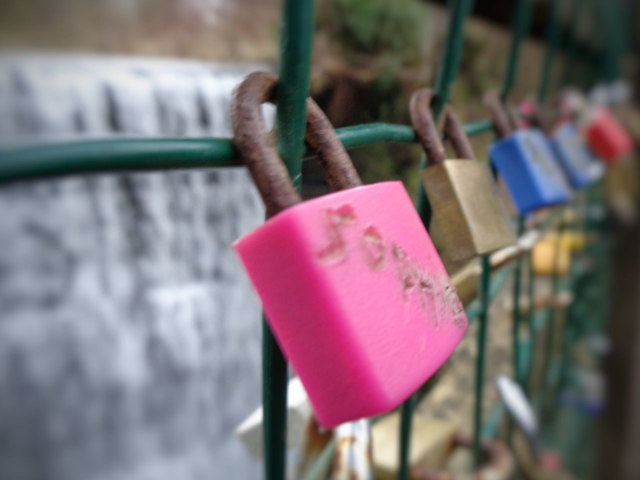 Love Lock Close-up Focus On Foreground No People Winter Walk Beauty In Nature 3XSPUnity EyeEm EyeEm Gallery A Walk In The Park Lover's Padlocks