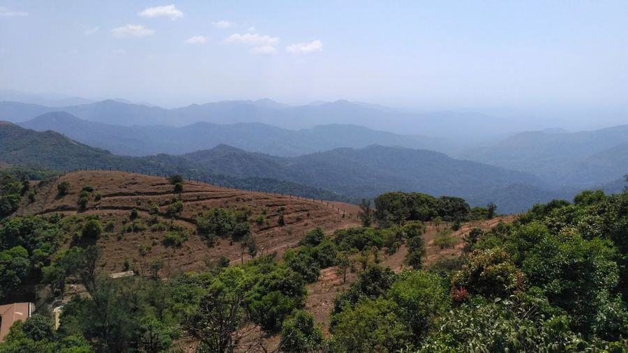 Forest Greenery Hillrange Hilltop Mountains Mountain Range Brahmgiri Beauty In Nature Nature Trees Sky And Clouds Agriculture Landscape Outdoors Scenics No People Jungle