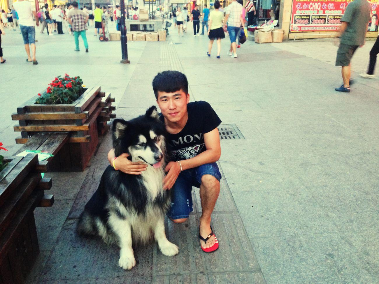 可爱的大狗狗