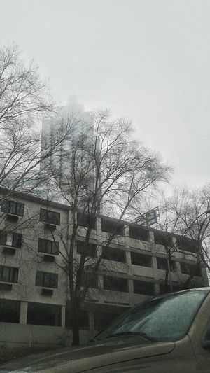 First Eyeem Photo Tree Edifice Edificio Niebla Paisaje Georgia USA Taking Photos Photography Photo Iwanttobeaphotographer Iloveyou Ilove Vacations 2016 Angel Carolton Tias IWantmyCanon