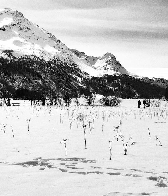 Black And White Photography Schwarzweiß Oberengadin Engadin Schweiz Alpen Snow Winter Naturelovers Switzerland Schweizer Alpen Mountains Clouds And Sky Engadin Skimarathon Oberengadiner Seen Nature Quiet Moments