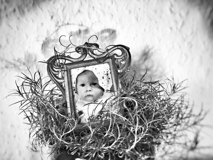 Childhood Grass One Person Real People Babyhood Portrait Crown Close-up Kids Being Kids Kidsphotography Women Around The World Welcome To Black