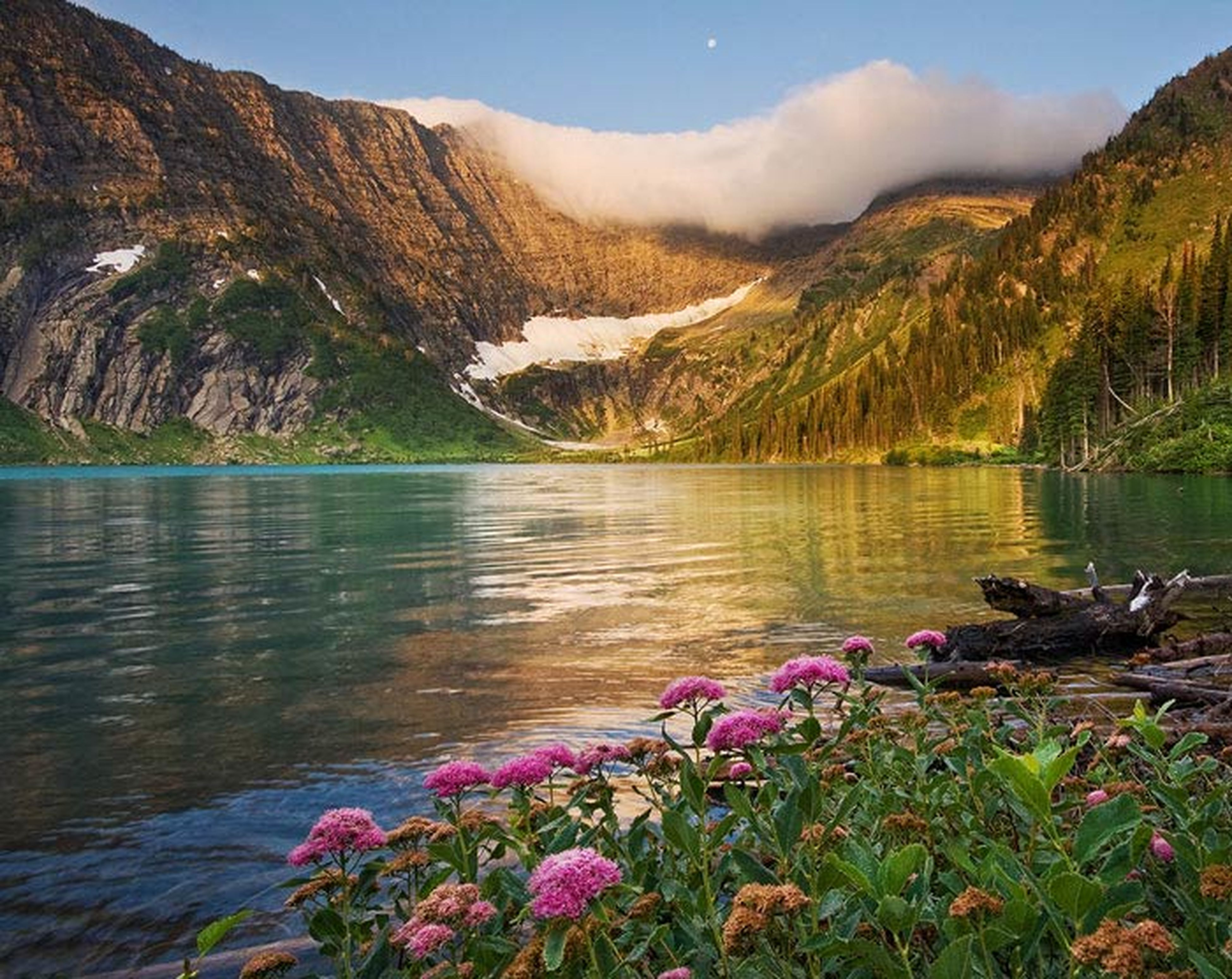mountain, water, tranquil scene, lake, beauty in nature, tranquility, flower, scenics, nature, mountain range, growth, plant, sky, idyllic, tree, reflection, day, river, lakeshore, non-urban scene