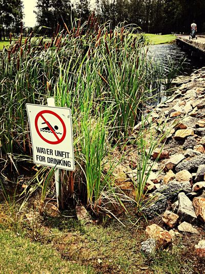 Lucky, I'm known for drinking out of water hazards on a golf course! Taking Photos Check This Out Walking Around Golfing Water Bridge Signs Enjoying Life Holiday Green