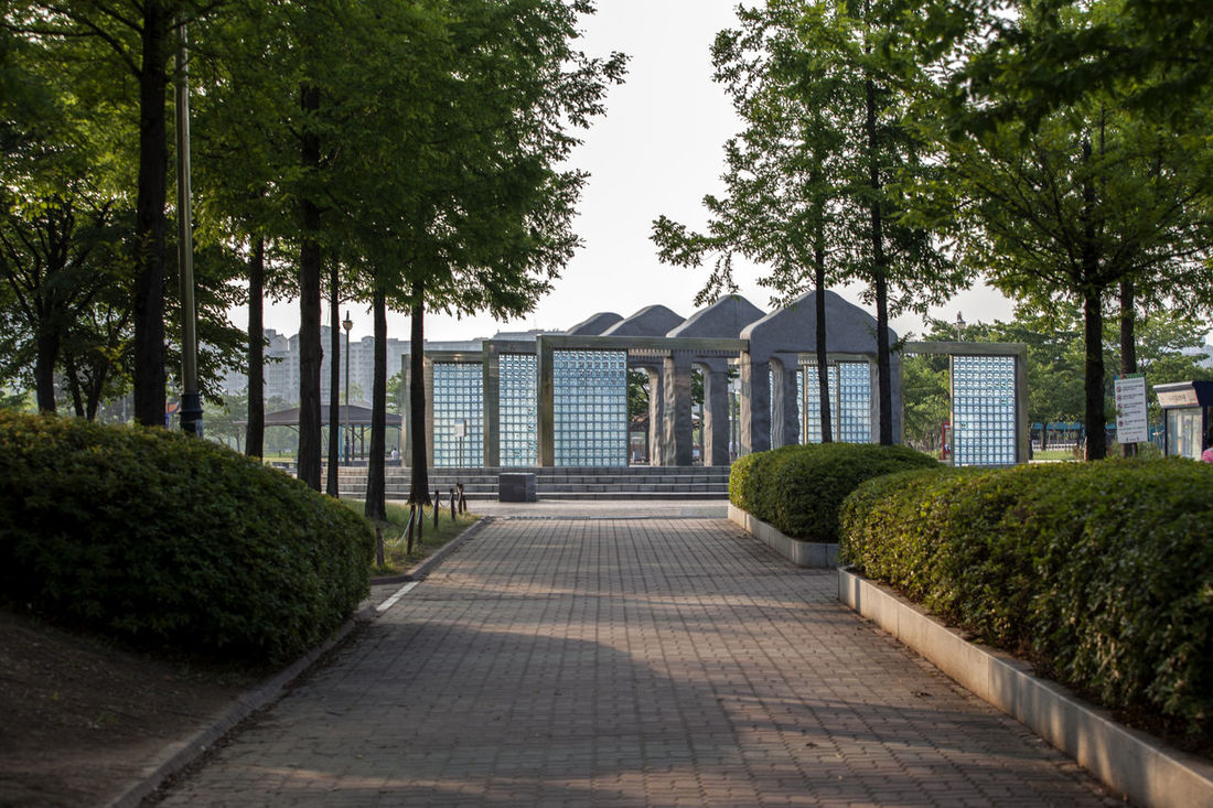 Architecture Bucheon Lake Park Built Structure Day Diminishing Perspective Empty Footpath Grass Green Green Color Lawn Long Narrow Nature No People Outdoors Pathway Plant Sky Sunlight The Way Forward Tranquility Tree Vanishing Point Walkway