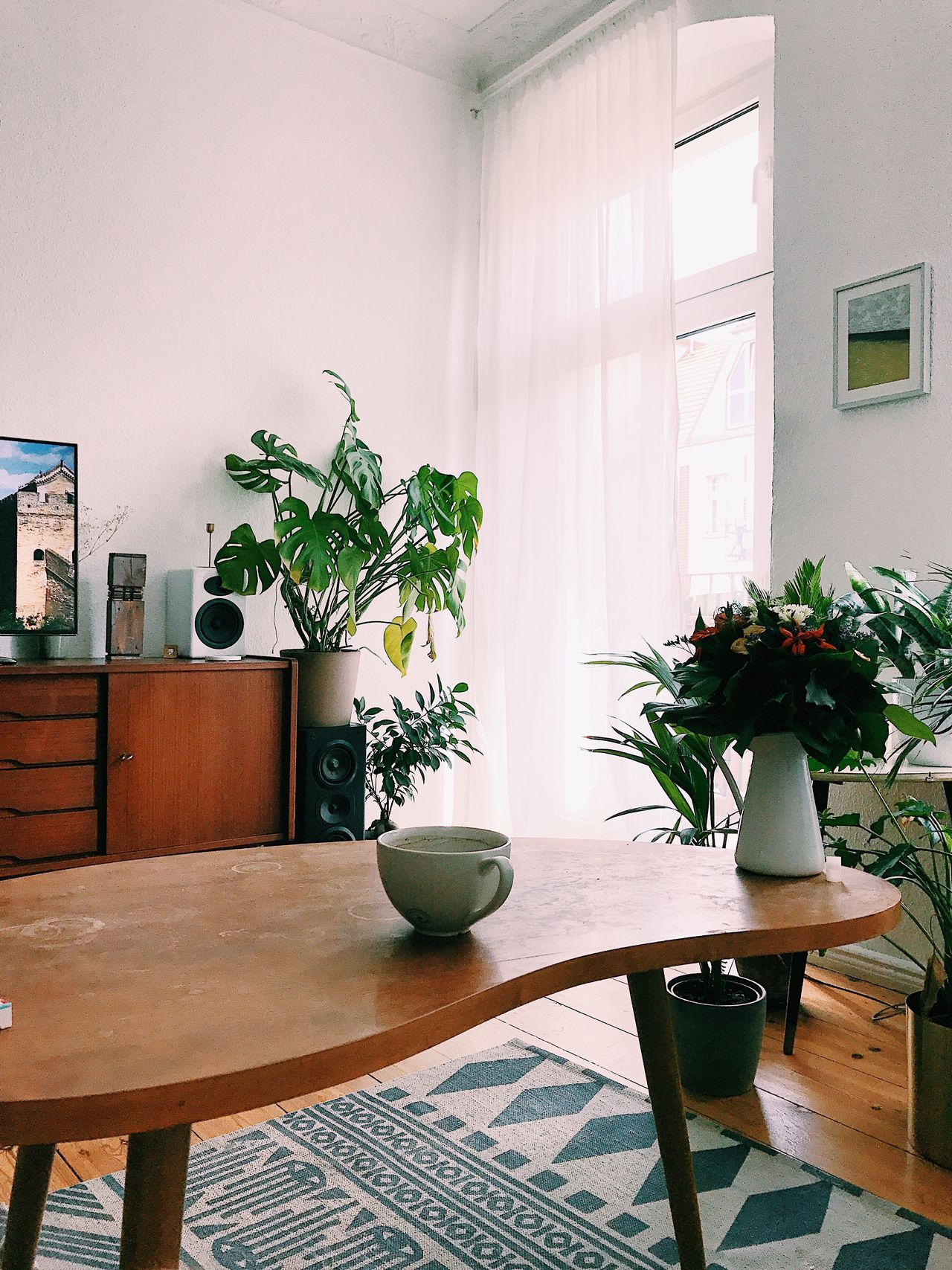 Table Potted Plant Indoors  Vase Home Interior Plant Chair Flower Wood - Material No People Day Growth Home Showcase Interior