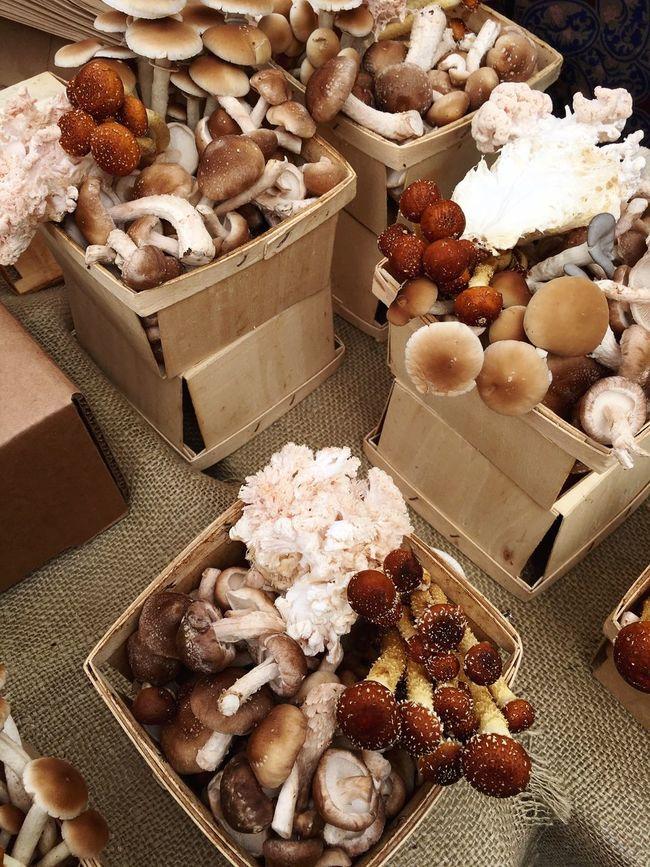 Mushrooms Farmers Market Food Organic Foraging Foraged Food