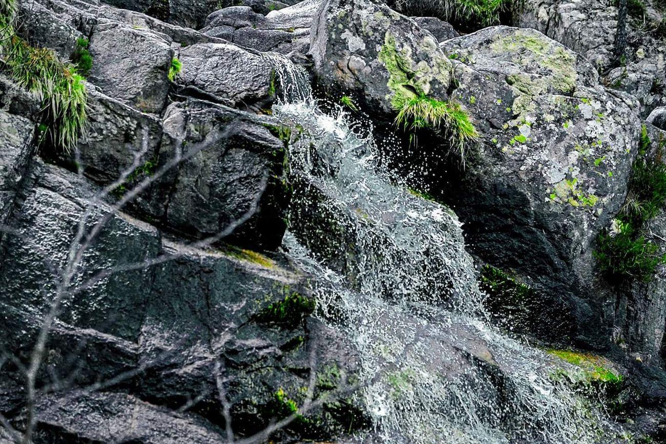 Roches Eau Petitecascade Gris Water Waterfall Smallwaterfall Rocks Grey Natur Pointdevue Day Pointofview Verdure Green Corse Corsica