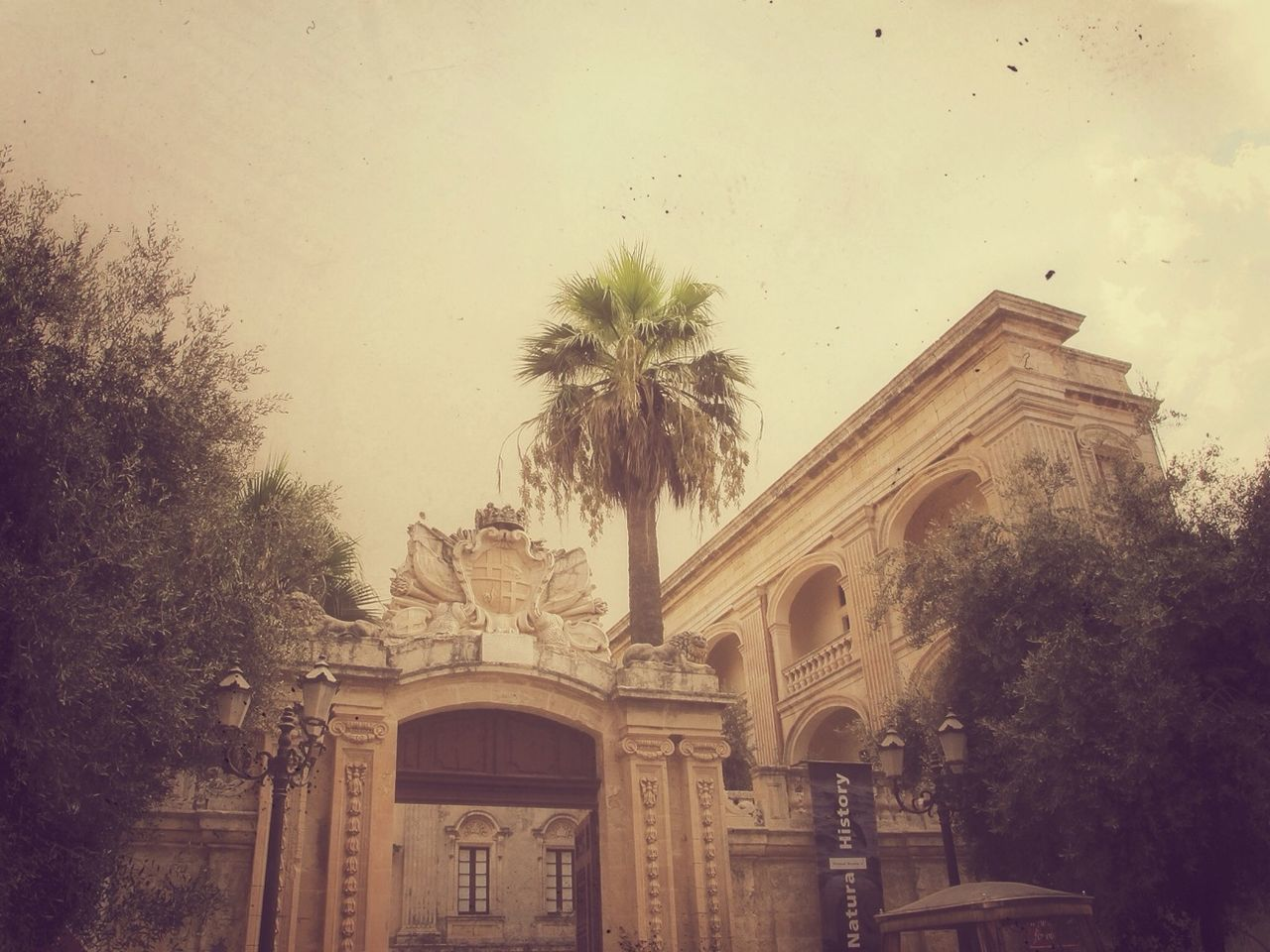architecture, built structure, tree, no people, low angle view, sky, building exterior, palm tree, outdoors, day