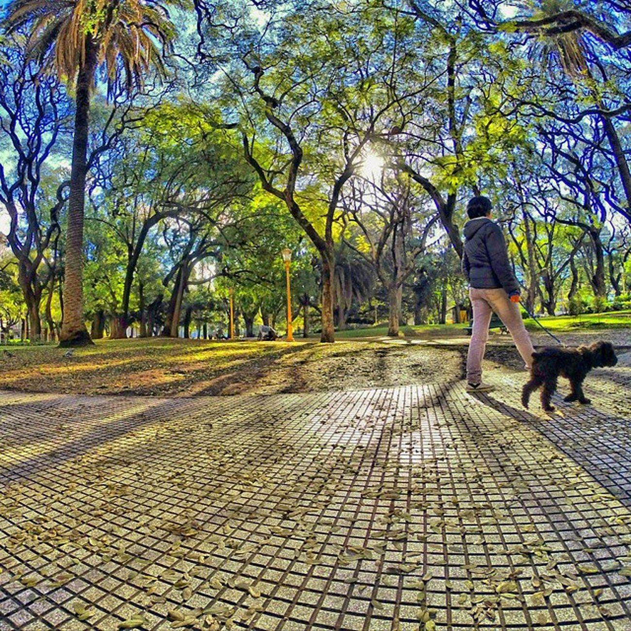Buenosaires Plazasanmartin