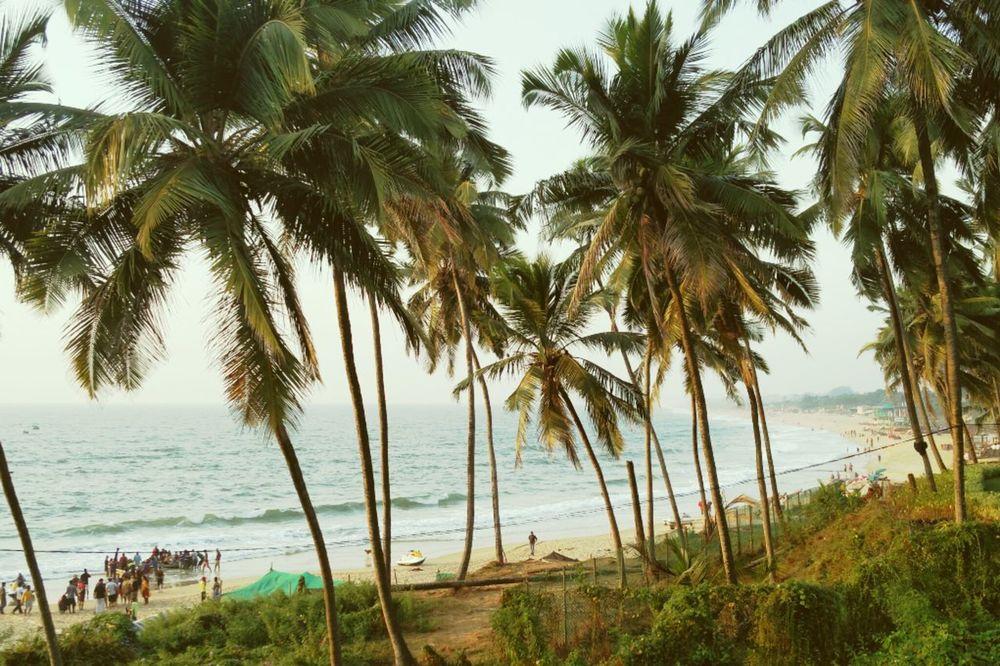 By the beach! Goa Palm Tree Sea Calm Tourism Beautiful Sky Sinquerimbeach Oneplus2 Onepluslife First Eyeem Photo