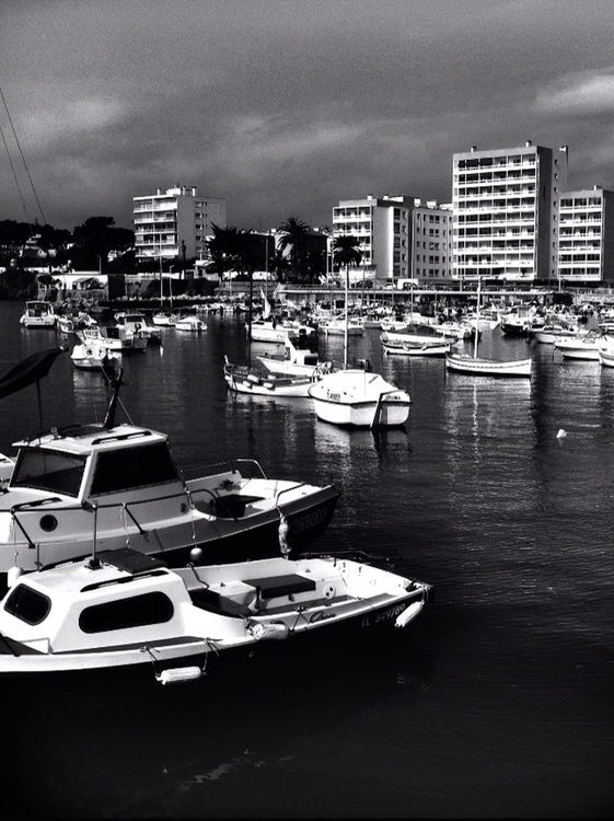 blackandwhite at Toulon by Giki
