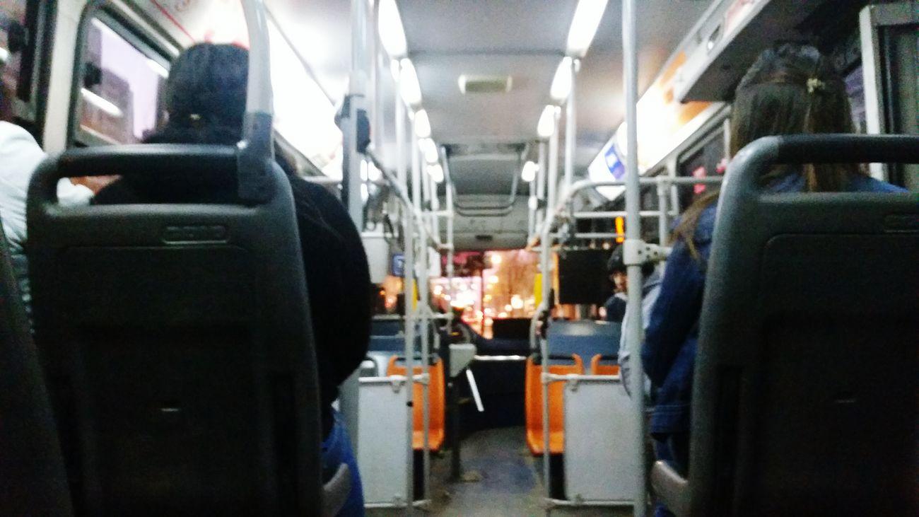 213E Bus Transantiago Public Transportation