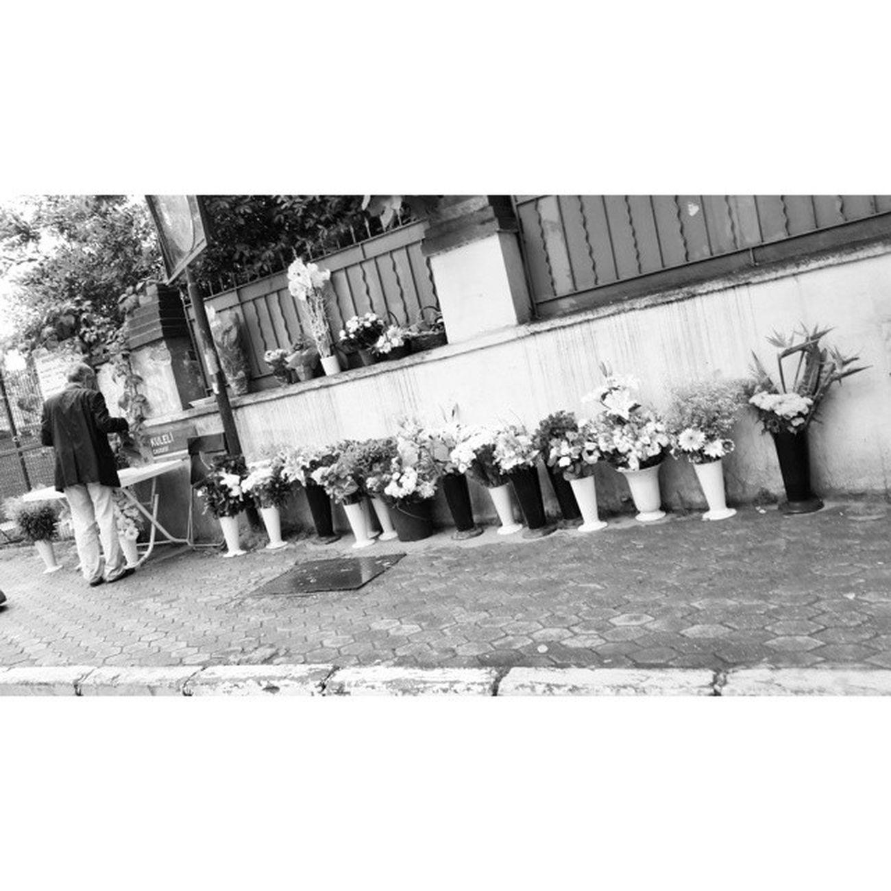 Bu çiçekçi abimiz sizin bildiginiz sokak saticilarina benzemez. Boğazın Anadolu yakasi bilir.